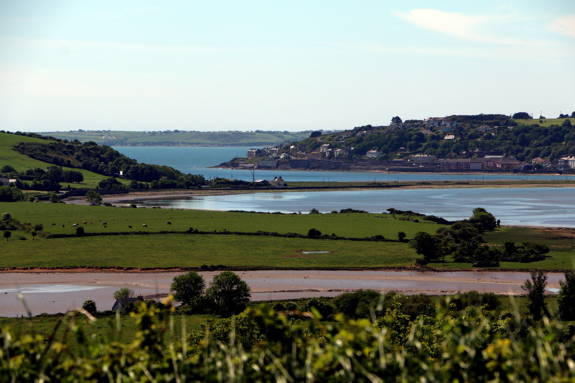 Natural Heritage Youghal